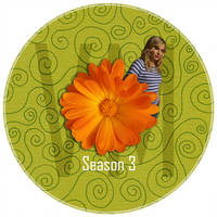 Veronica Mars Season 3 by manila-craze