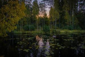 September II by mabuli