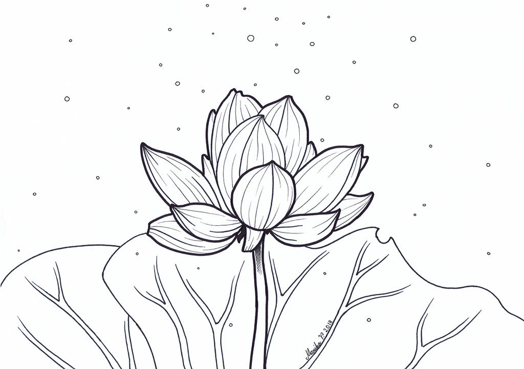 Colouring Picture - Lotus by YikYik