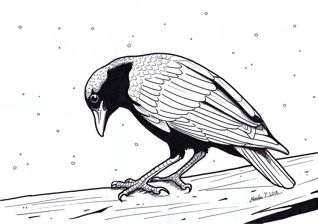 Colouring Picture - Crow by YikYik