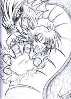 Dragon Fury by TifaFinsterherz