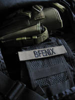 Tags BFenix by HeavyBenny