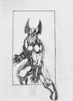 Xforce Wolverine by Fab by fabienart77