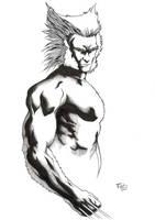 Wolverine by fabienart77