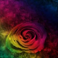 Rainbow Rose by MelGama