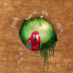 Floresta Encantada by MelGama
