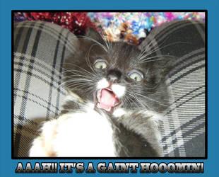 Giant hoomin by CrazyConfuzing