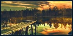 Sunny pond by Th3Un1qu3
