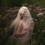 Untitled by aleksandra88