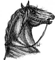 Knight horse by horsegirljess
