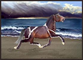 Passing Anger by horsegirljess