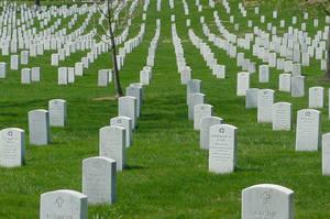 Arlington National 8 by patrickstrange