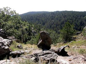 Black Hills, SD 2 by LhindyLouRhage