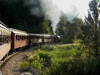 1800 Train, Black Hills SD by LhindyLouRhage