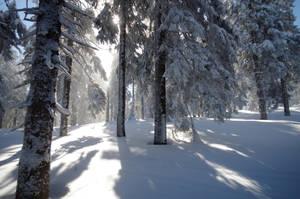 Snieznik by Vefantur