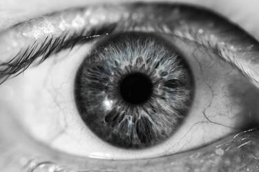 Eye See You by LilDizzyDizaster