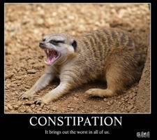 Constipation by Sn1p3rz