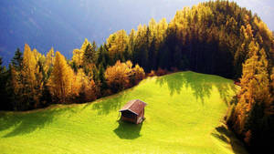 beautiful landscape by mohammadshadeed