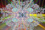 Lucide Rozetta by graphrainbow