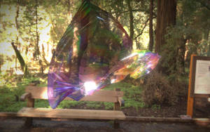 Rainbow Shell by graphrainbow
