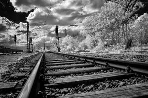 rails by vw1956