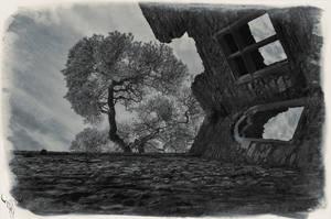 castle by vw1956