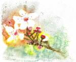 Blossom by heartMelinda