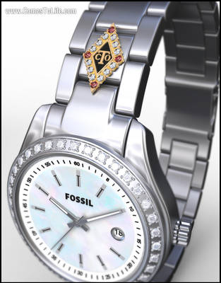 FOSSIL OCT by zoomzoom