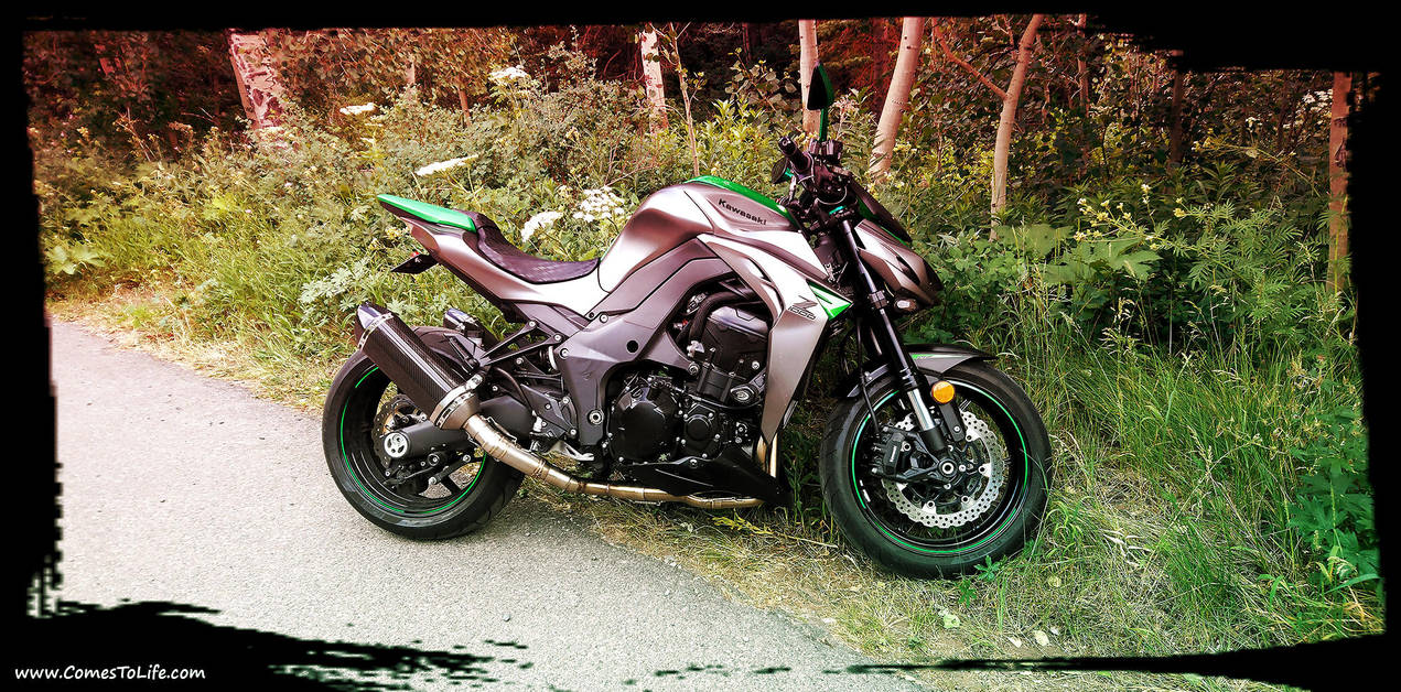 2016 Kawasaki Z1000 by zoomzoom