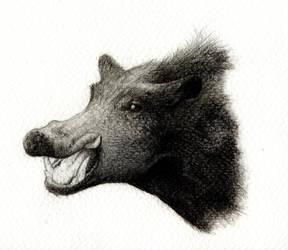 Wild boar by Titanslicer