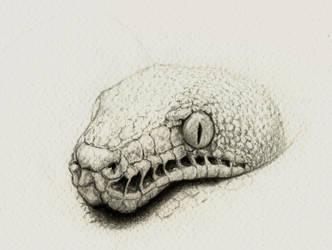 Green tree python by Titanslicer