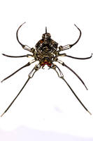 Steampunk Spider by CatherinetteRings