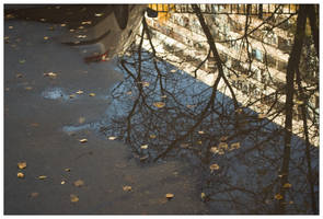 Reflection by Ilyich