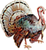 The Harvest Goddess (Turkey) Icon big by linux-rules