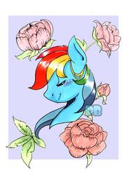 Rainbow Dash Portrait by PoneBooth