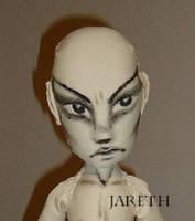 Custom 'Jareth' One of a Kind (OOAK) Khaki Ragdoll by briescha