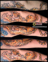 Tattoo: Japanese Traditional-style Tiger by briescha