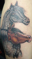 Tattoo: Touchup of Horses, one of my early tattoos by briescha