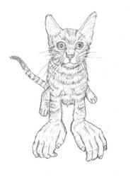 Mister Kitty Man by Lareieli