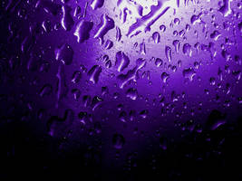 Purple Steel by greyslug