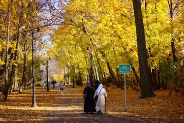 Somerville Community Path Foliage by dseomn