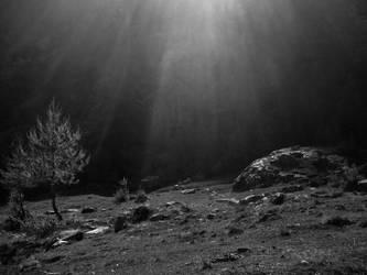 Hvis Lyset Tar Oss by blackresurrection