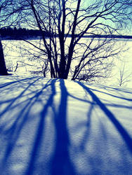Shadow will follow by PurpleScarecrow