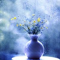 wildflowers by bebefromtheblock