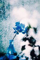 blue hour by bebefromtheblock