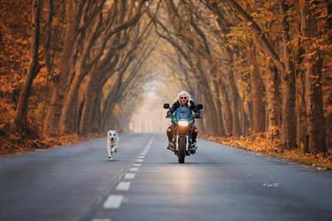 A girl, her bike and her dog by Lain-AwakeAtNight