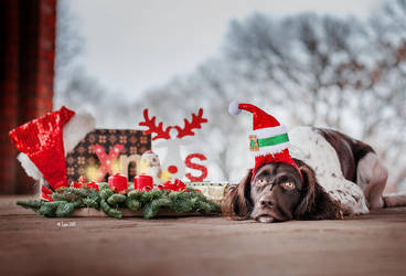 Waiting for Santa by Lain-AwakeAtNight