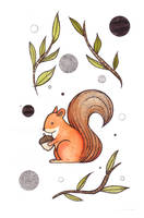 Polish Animals miniseries- squirrel by beathaart