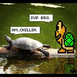 Turtle Talk by MightyMusc