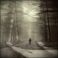 winter-school for dead poets by covanea